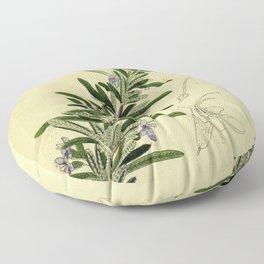 Botanical Rosemary Floor Pillow