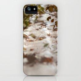 Fall Canada iPhone Case