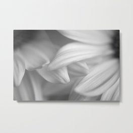Petals Caress Metal Print