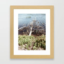 Growing strong and growing strange. Framed Art Print