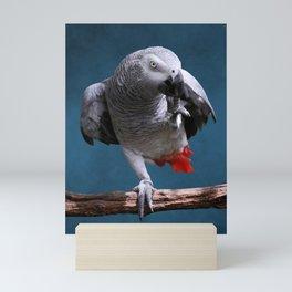 Secretive African Gray Parrot Mini Art Print