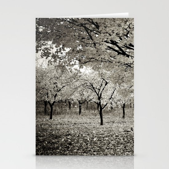 Wind and Leaves - B&W Stationery Cards