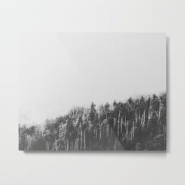INTO THE WILD XXVII / Great Smoky Mountains Metal Print
