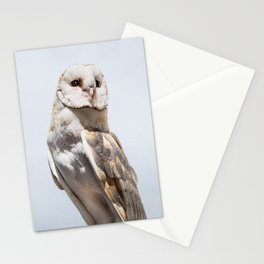 Owl Portrait Photography Stationery Cards
