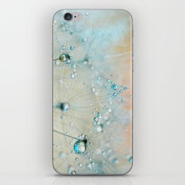 dandelion blue III iPhone Skin