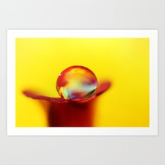 Flower Drop Art Print