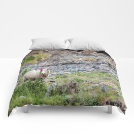 Ewe (Sheep) Posing with a Lupin in New Zealand Comforters