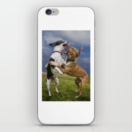 Dogs with game face on .14 iPhone Skin