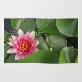 Lotus Flowe_pink1 Rug