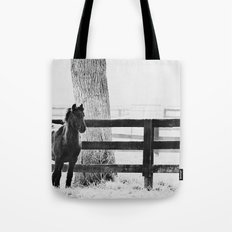 horse by the fence Tote Bag