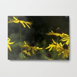 plight of the bees III Metal Print