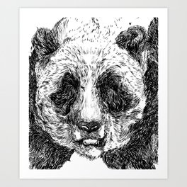 The Illustrated Panda Art Print