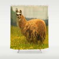 llama Shower Curtains featuring Llama by Nature In Art...