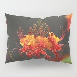 Desert Fall Colors V Pillow Sham