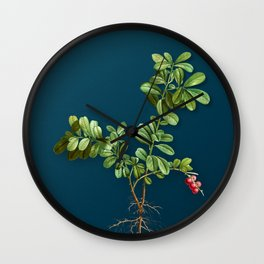 Vintage Lingonberry Botanical Illustration on Teal Wall Clock
