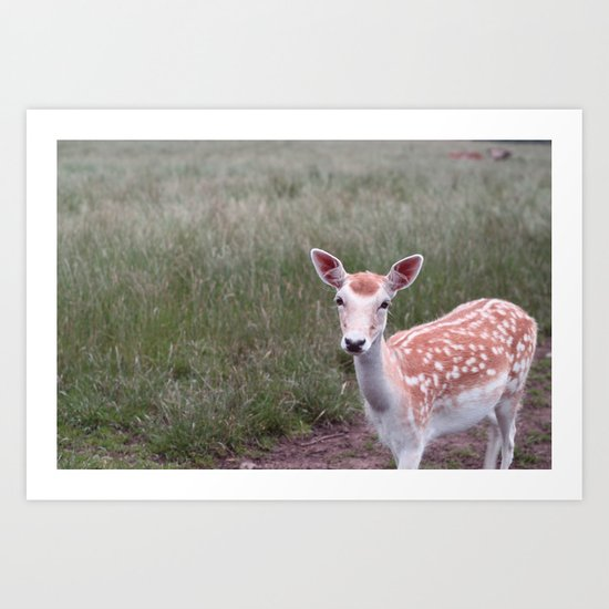 Sika Deer Art Print