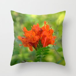 Exotic Ginger Flower Bignone 9125 Throw Pillow
