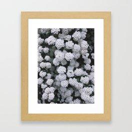 Little White Flowers [Part 2] Framed Art Print