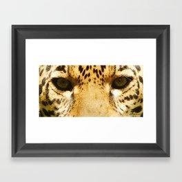 Jaguar Eyes Framed Art Print