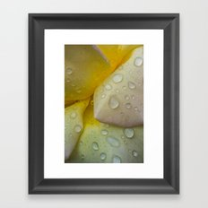 The Beauty of Life Framed Art Print