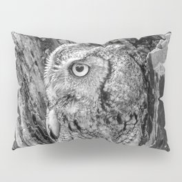 Echo the Screech Owl by Teresa Thompson Pillow Sham
