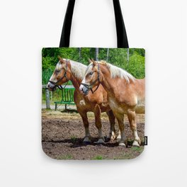 """Equine Duo"" Tote Bag"
