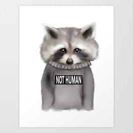 Raccoon Not human Art Print