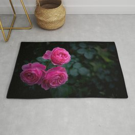 Marvelous Gracious Garland Of Pink Roses Close Up Ultra HD Rug