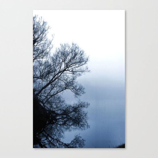 Swans in the Mist Canvas Print