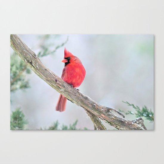 "Cardinal: ""Do You Hear What I Hear?"" Canvas Print"
