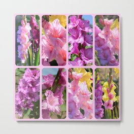 Gladiolus in Pink Collage Metal Print