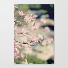 {Magnolia} Canvas Print