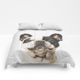 Frenchie Comforters