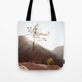 Morning Light on Angel's Landing Tree (Zion National Park, Utah) Tote Bag