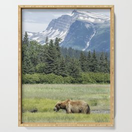 Male Brown Bear at Lake Clark NP Serving Tray