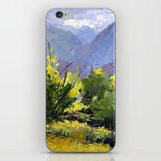 Fading Light iPhone & iPod Skin