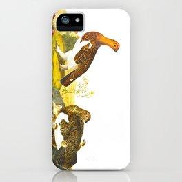 Willow Grouse, or Large Ptarmigan Bird iPhone Case