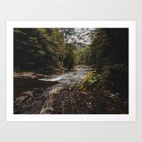 Hidden Creeks. Art Print