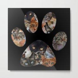 Cats Paw Metal Print