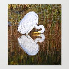 Great egret reflections Canvas Print