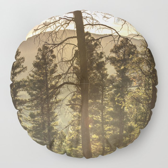 Mountain Forest New Mexico - Nature Photography Floor Pillow