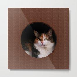 The Kitten In Me Metal Print