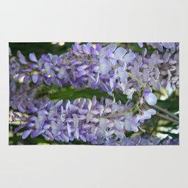 Lilac Wisteria  Rug