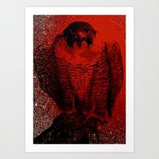 falcon 3 Art Print