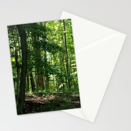 Pine tree woods Stationery Cards