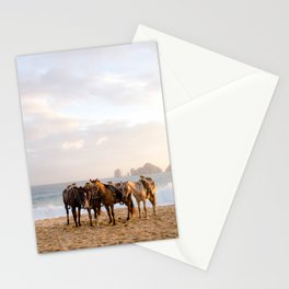 Horses on the beach Stationery Cards