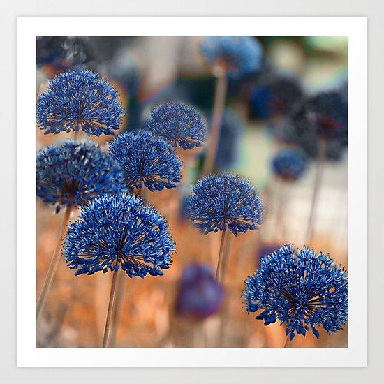 Blue ball flowers. Art Print