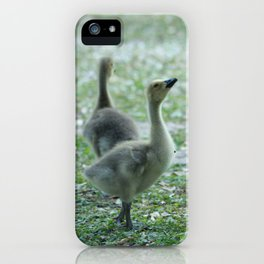 Zest for life iPhone Case