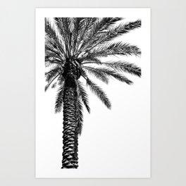 Tropical Darkroom #163 Art Print