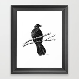 Raven Part 2.  Framed Art Print